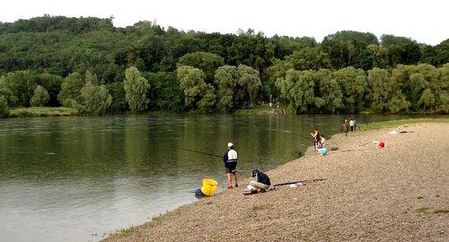 The River Drava on the border of Croatia and Hungary (Copyright © 2010 runinternational.eu)