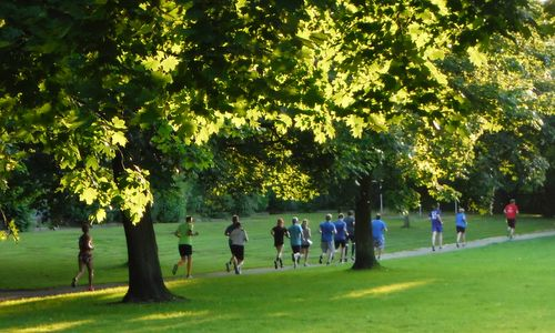 Buntekuhlauf, Lübeck, Germany - runners in the Wiesental park in Buntekuh (Photo copyright © 2017 Hendrik Böttger / runinternational.eu)
