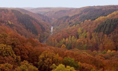 The Wupper valley as seen from the Müngsten Bridge (Author: Homo oecologicus at German Wikipedia / public domain / photo cropped by runinternational.eu)