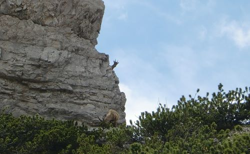 In skyraces, there are not many spectators on the course (Copyright © 2010 runinternational.eu)