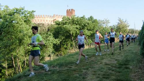 Trail Soave-Bolca 2011, in Soave (Copyright © 2011 runinternational.eu)