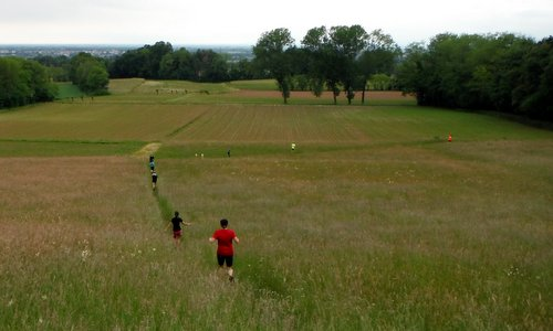 Marcia dei Cajs - runners in the countryside near Battaglia di Fagagna, Friuli, Italy (Copyright © 2017 Hendrik Böttger / runinternational.eu)
