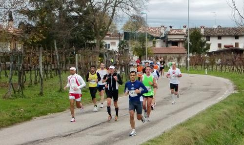 Mezza Maratona Città di Palmanova, Italy - Half marathon runners pass the vineyards at Clauiano (Copyright © 2017 Hendrik Böttger / runinternational.eu)