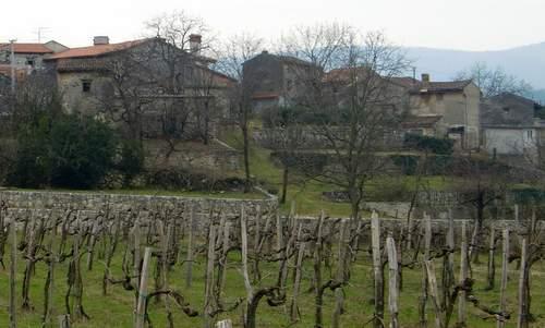 Batuje, Primorska, Slovenia (Copyright © 2014 Hendrik Böttger / runinternational.eu)