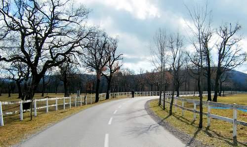 Lipica stud farm, Slovenia (Copyright © 2011 runinternational.eu)